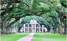 Tour Oak Alley Plantation with New Orleans Native Tours.
