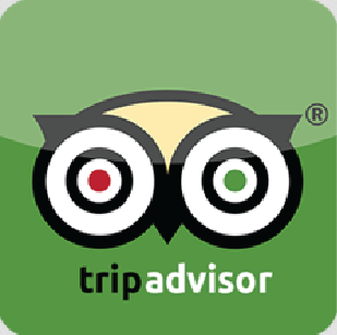 Great Tours In New Orleans New Orleans Native Tours